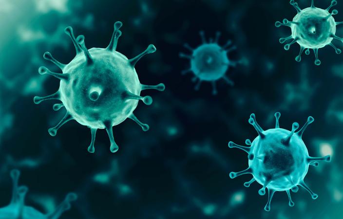Cinco novos casos de Covid-19 são confirmados em Palmeira