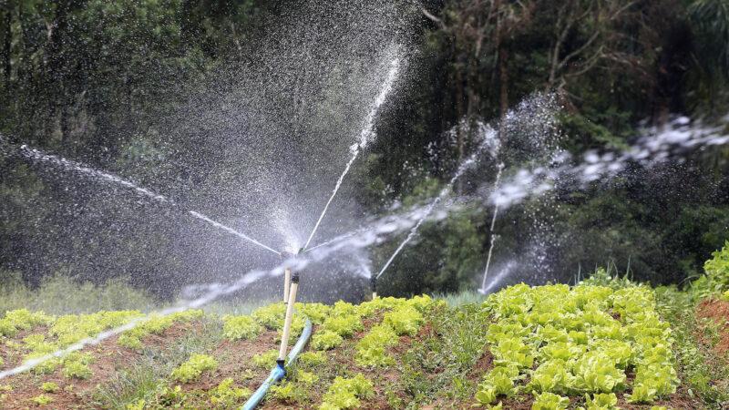 Produção de alimentos também precisa de mais chuva