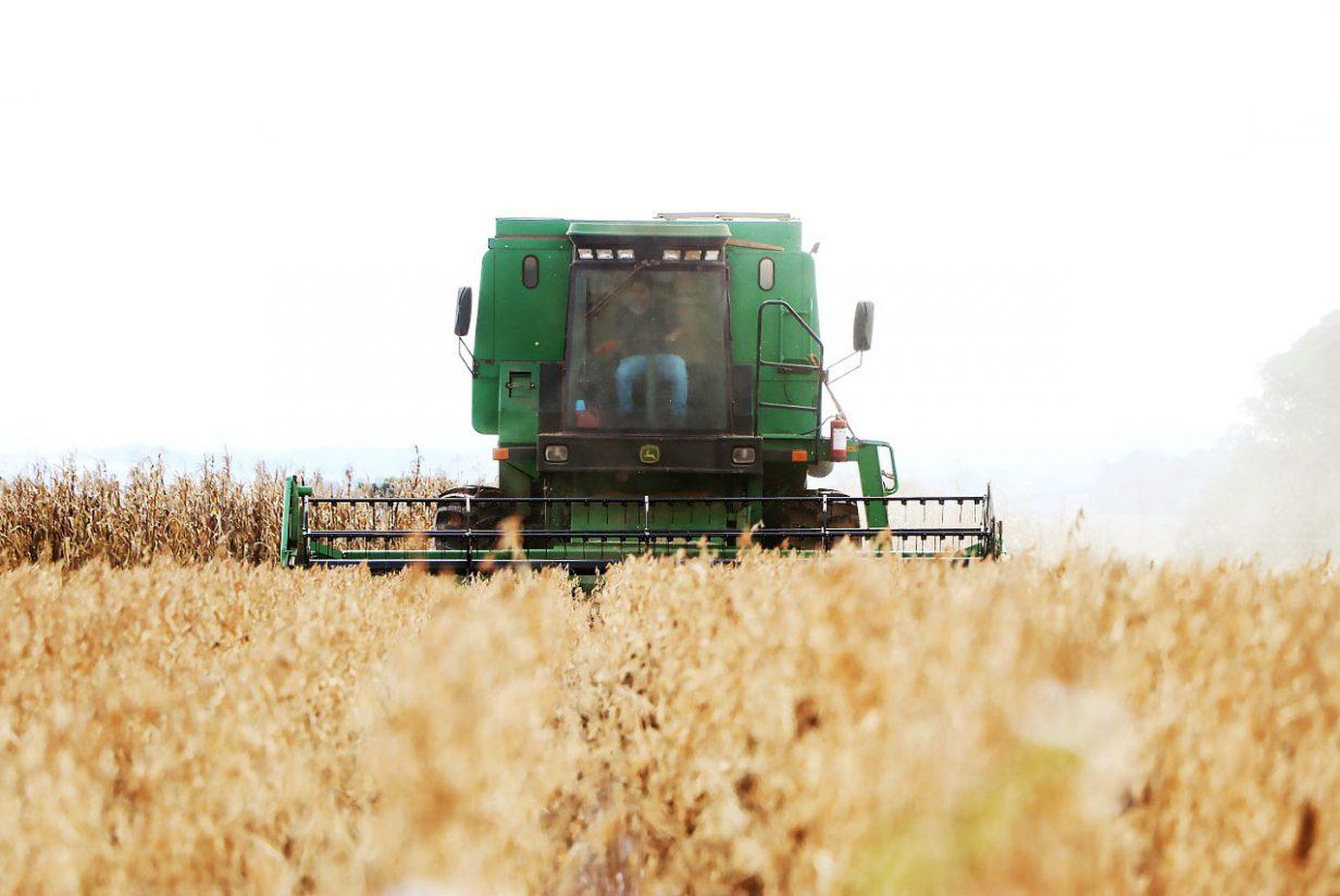 Agronomia da UEPG está entre os melhores do país, com nota máxima no Enade