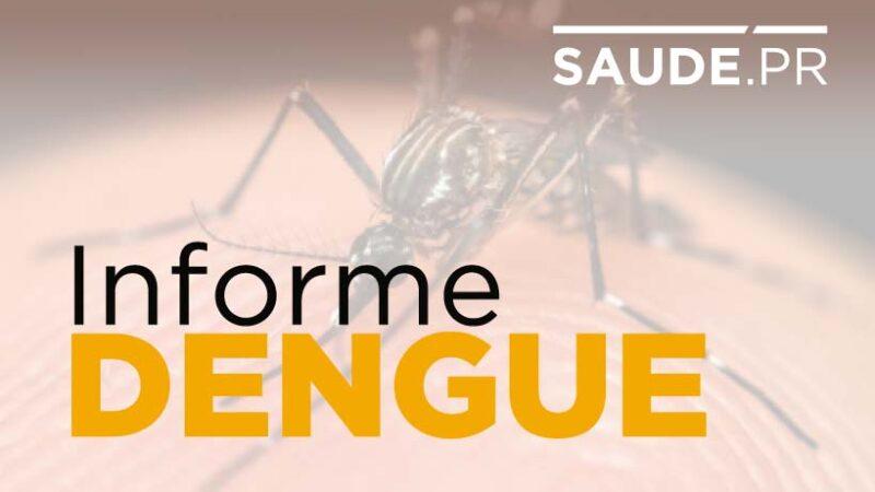 Paraná tem 1.946 casos de dengue e combate à doença continua como prioridade