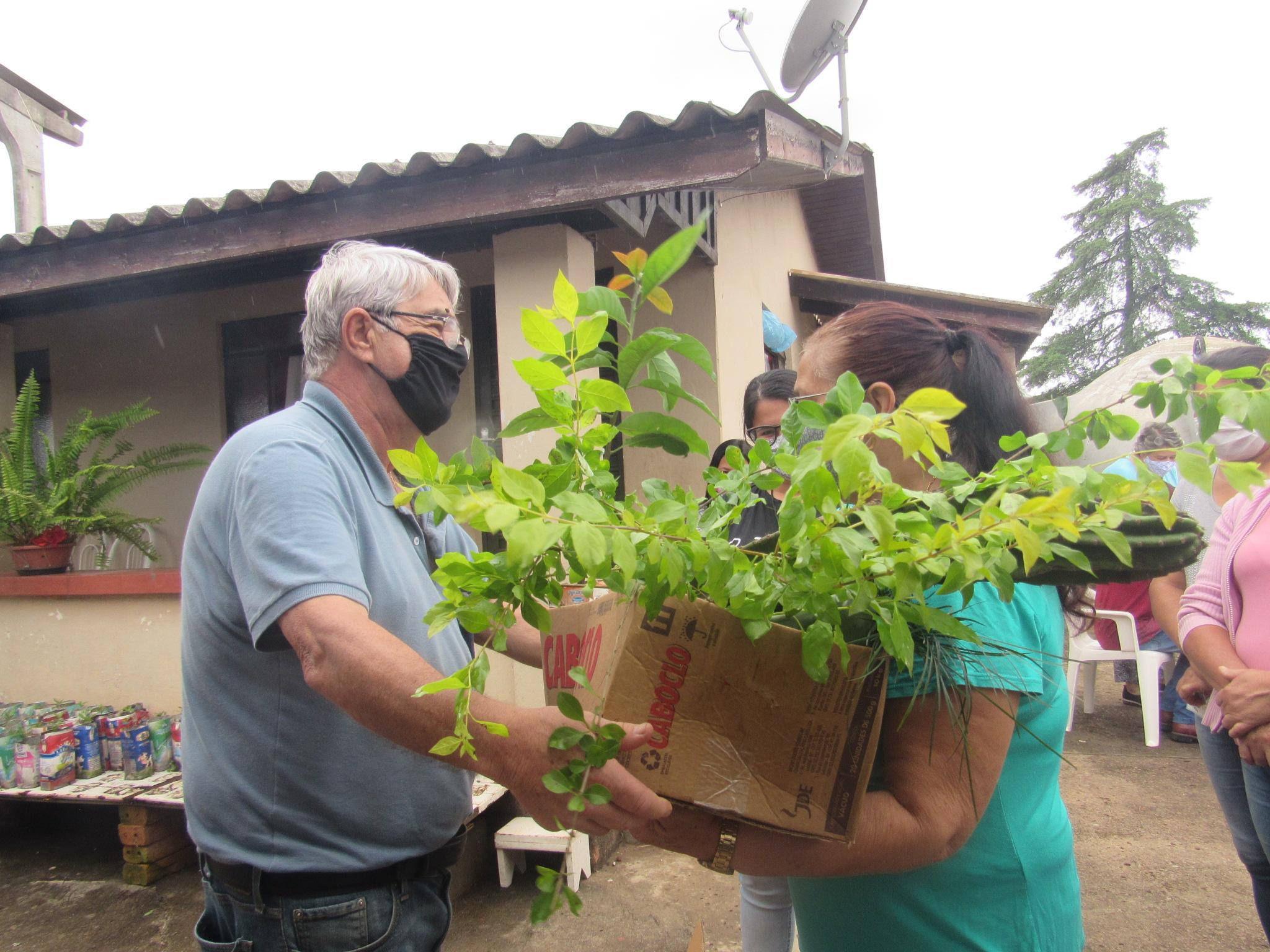 Projeto 'Planeta Verde' distribui mudas em Castro