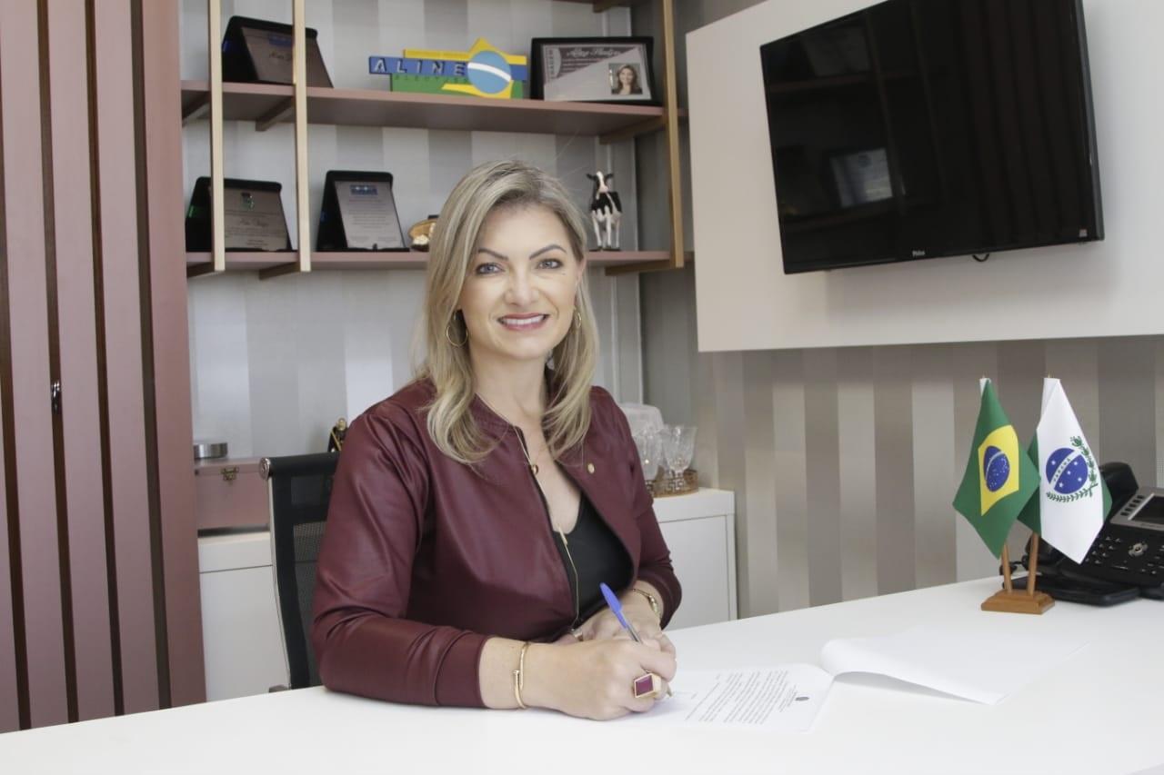 Deputada Aline Sleutjes trouxe 13 pontos de internet grátis para Castro