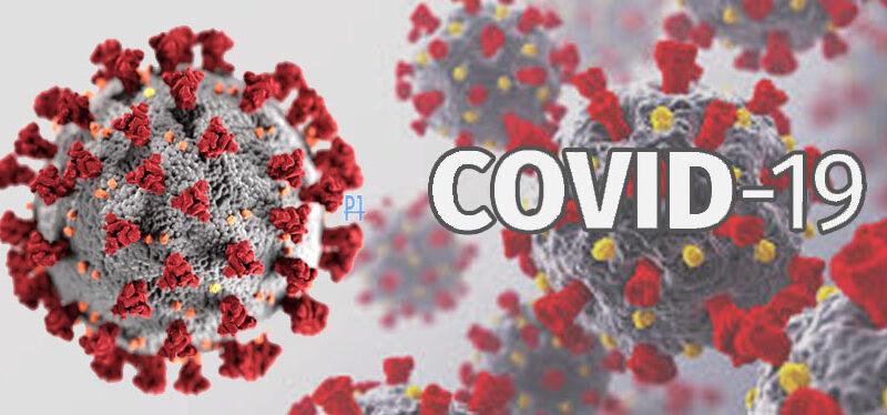 Palmeira confirma mais 30 novos casos de Covid-19