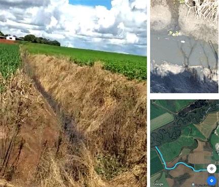 IAP diz que irá investigar excrementos de granjas despejados no rio Iapó