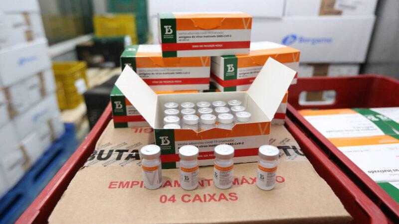 Novo lote da vacina CoronaVac com 64.800 doses chega ao Paraná