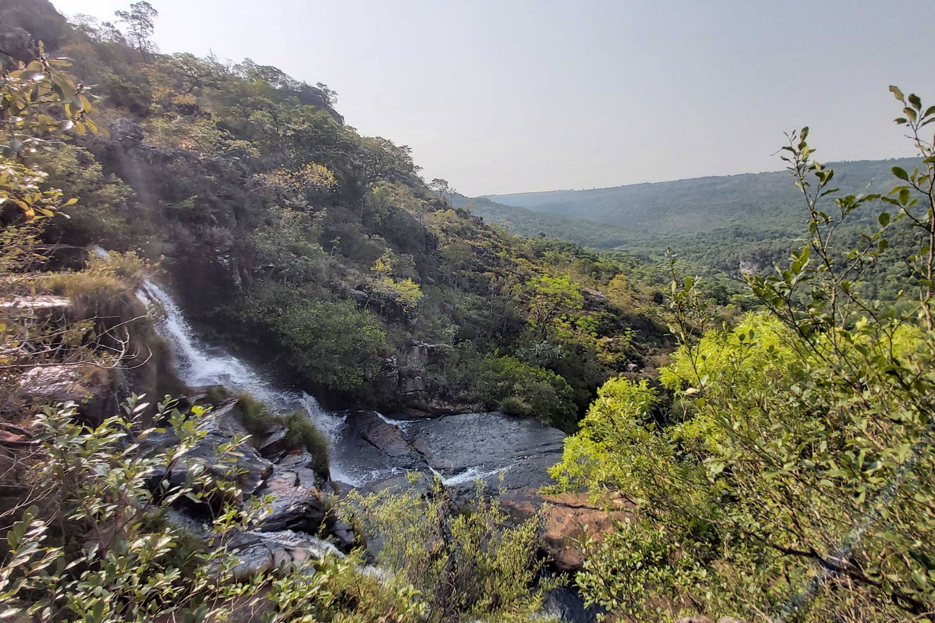 Paraná destina mais de R$ 701 mil para conservação de RPPNs