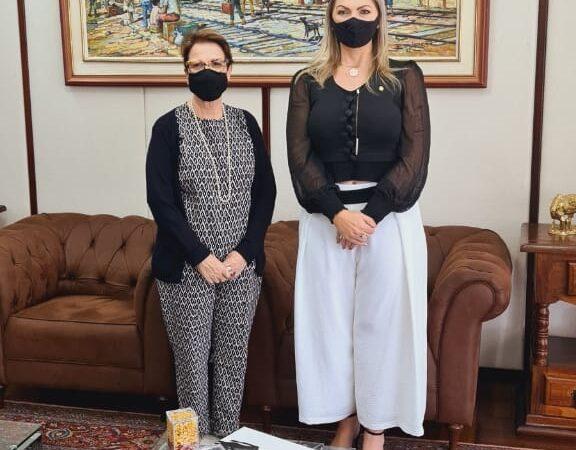 Deputada Aline e produtores debatem ações estratégicas em reunião com a ministra Tereza Cristina