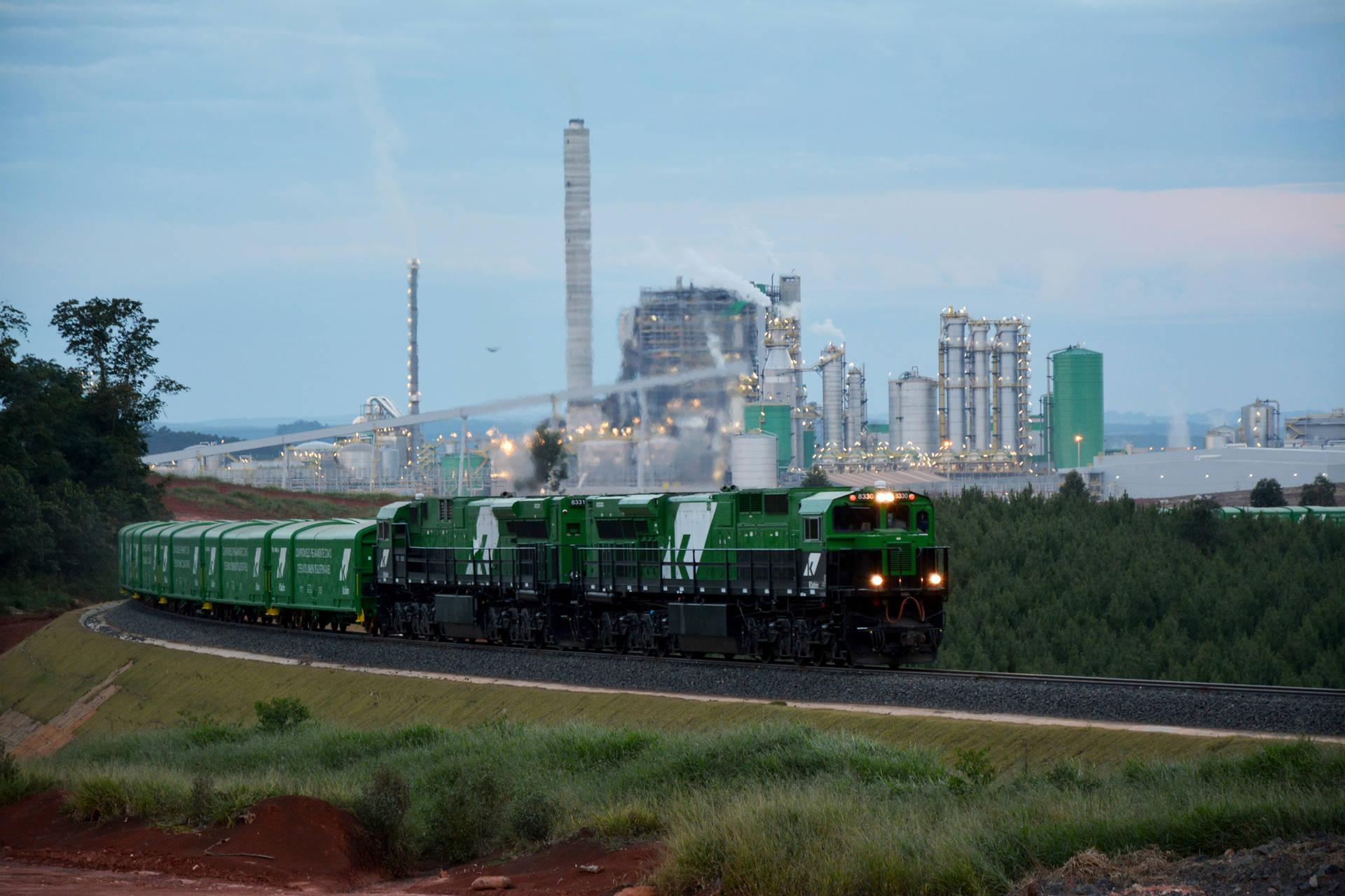 Transporte ferroviário de celulose para exportação pelo Porto de Paranaguá cresce 26%