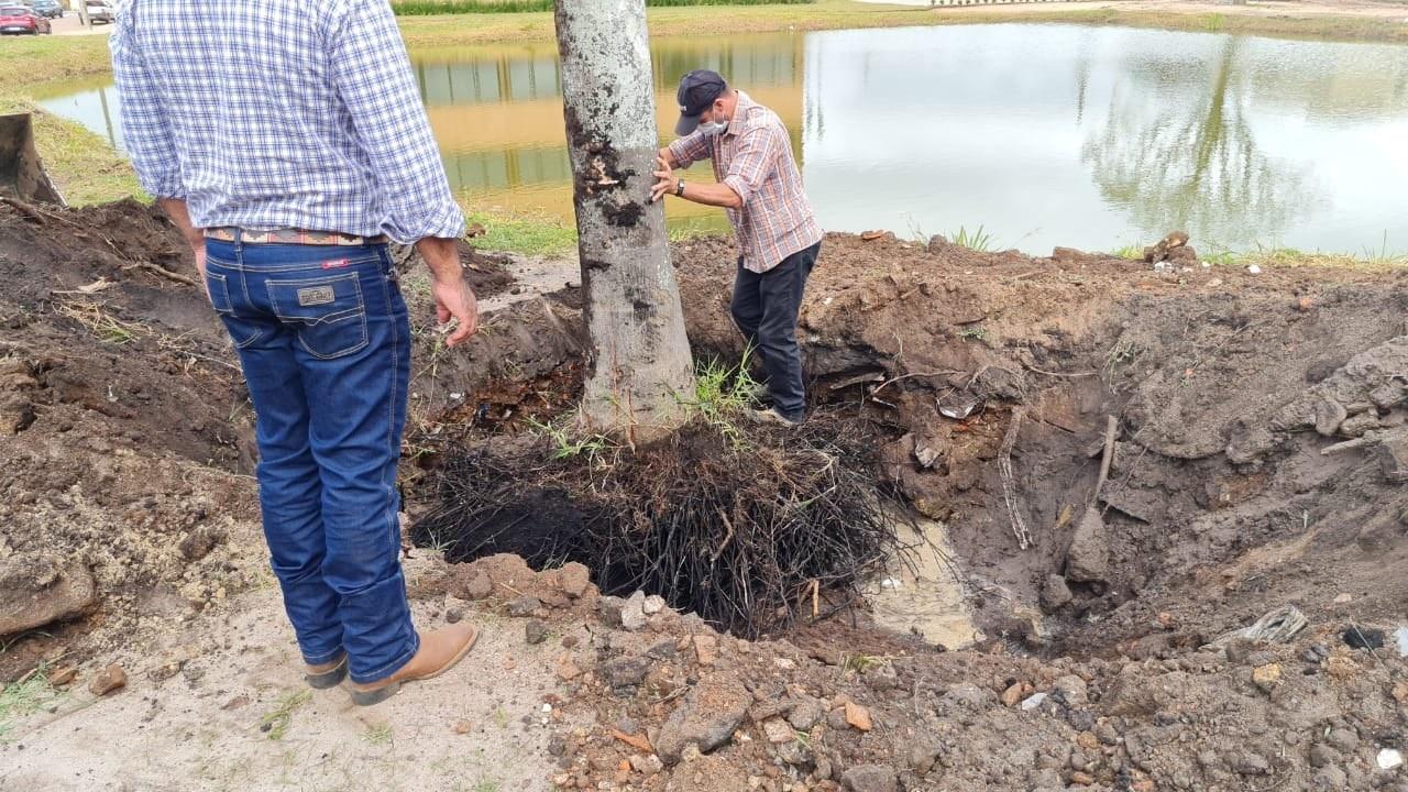 Paço Municipal recebe obras de paisagismo em Carambeí