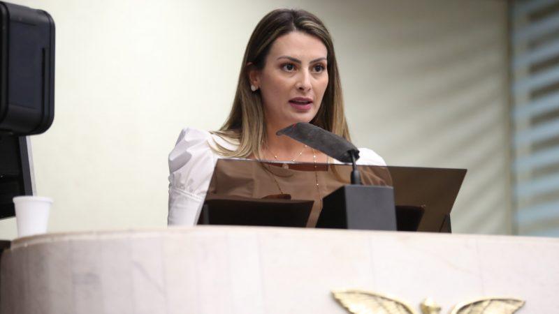 Mabel Canto e Frente Parlamentar realizam audiência pública sobre o pedágio dia 15