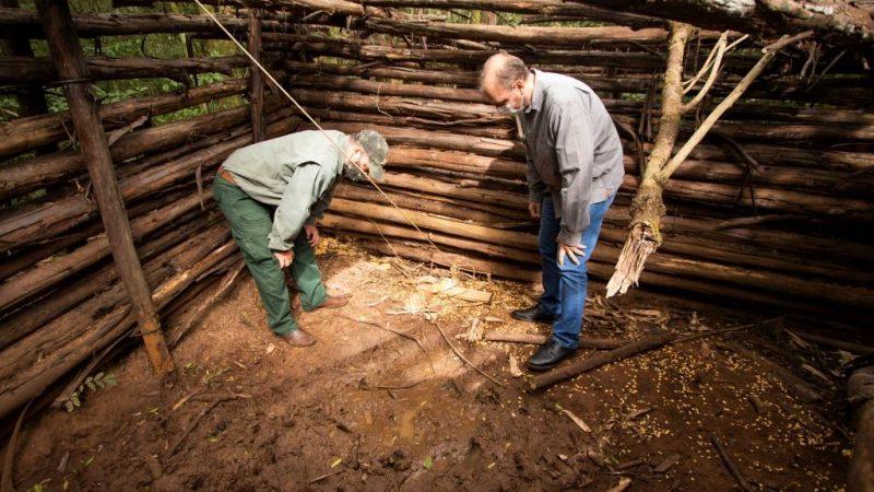 Projeto da UEPG analisa zoonoses relacionadas a javalis em parques do Paraná
