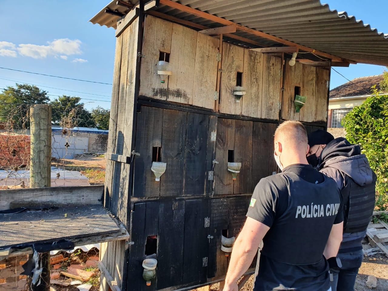 Polícia Civil de Castro realiza operação contra maus-tratos a animais