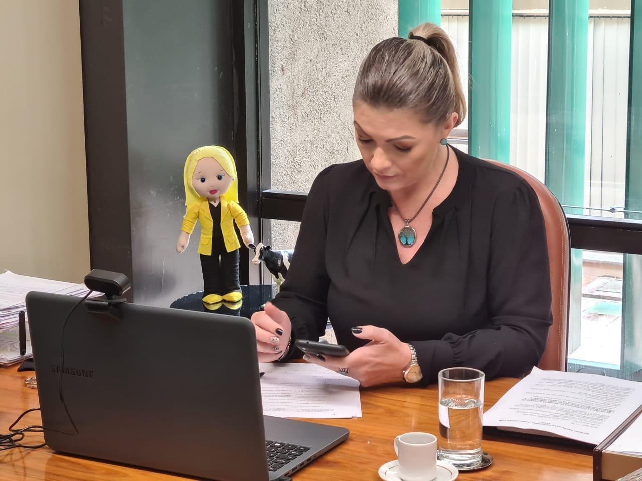 Deputada Aline Sleutjes afirma que políticas públicas precisam ser eficazes para a juventude permanecer no campo