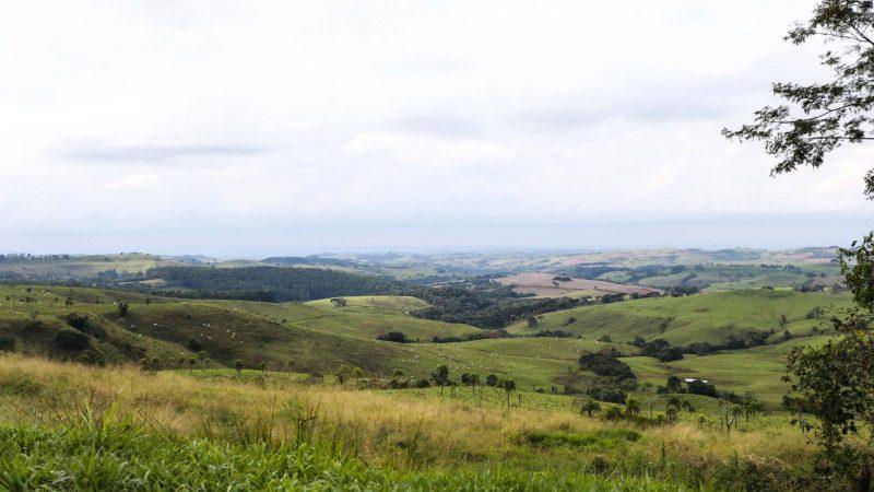 Com valorização da produção, preço de terras agrícolas sobe no Paraná