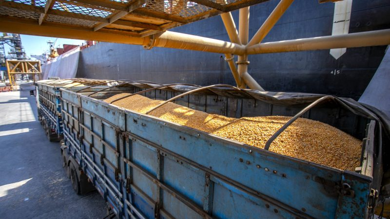 Porto de Paranaguá começa a receber milho de importação