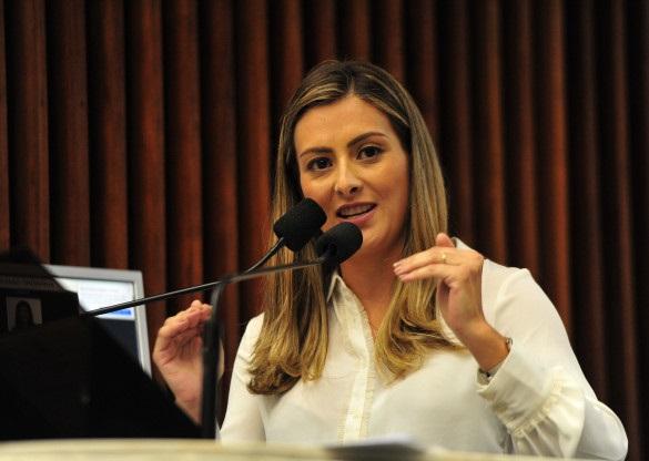 Deputados destacam atuação da Assembleia Legislativa para mudança da modelagem de pedágio