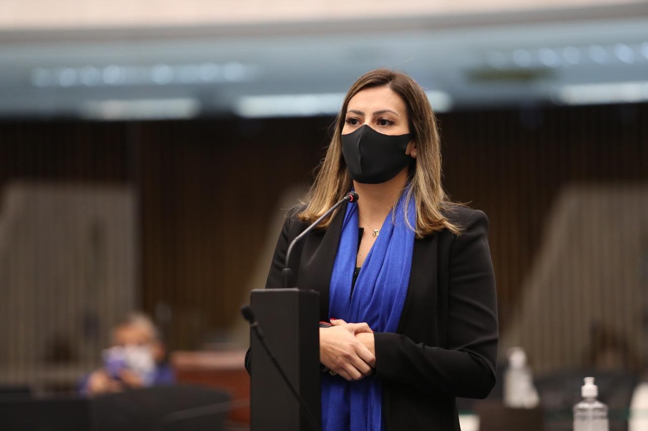 Mabel aponta que atuação paralela do Controlador-Geral do Estado teria beneficiado pedageiras no Paraná.