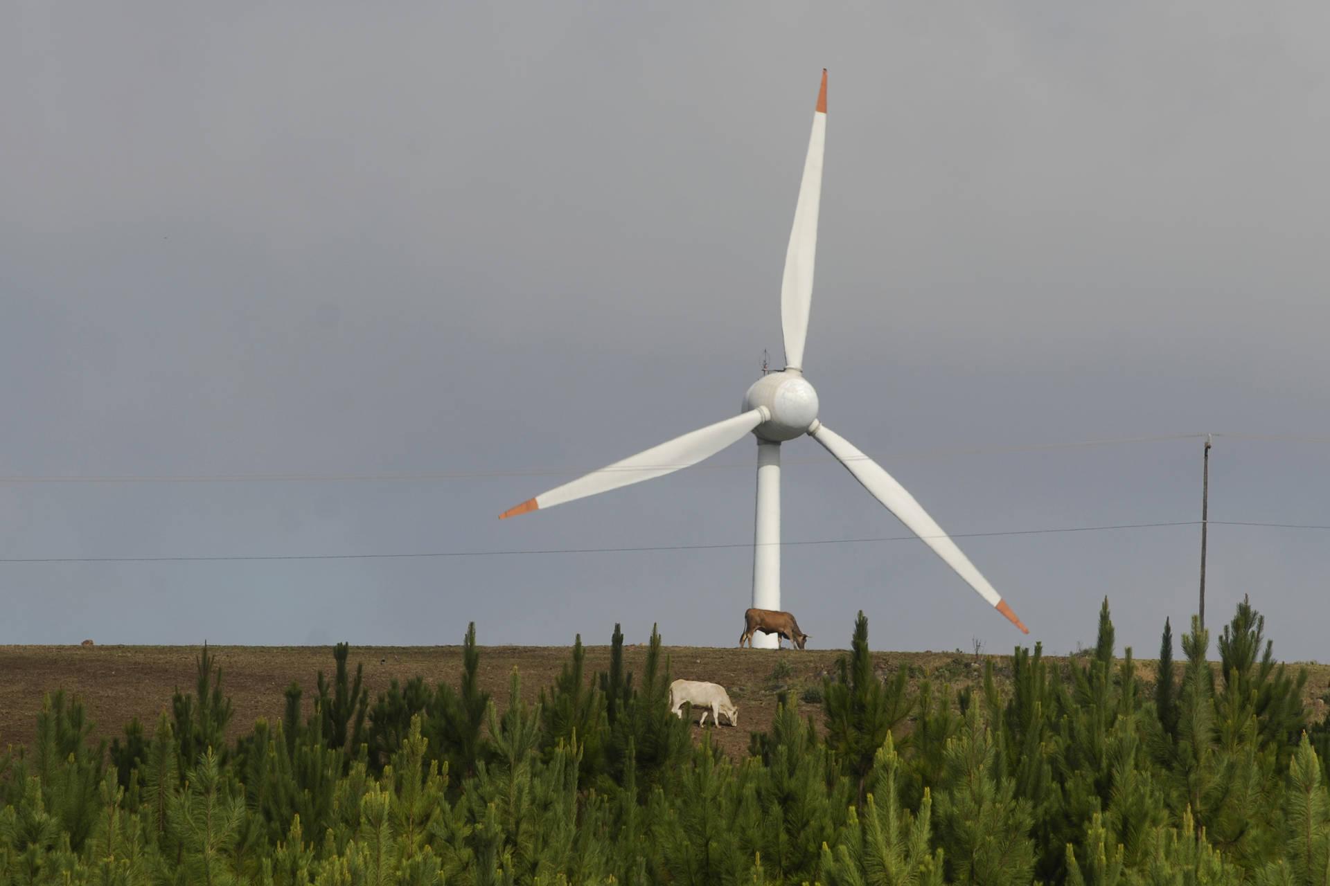 Estudo da OCDE mostra Paraná como exemplo mundial em desenvolvimento sustentável