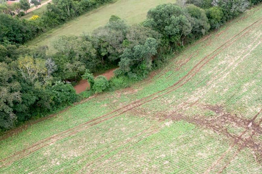 IAT identifica atividade irregular em área de preservação permanente em Ponta Grossa