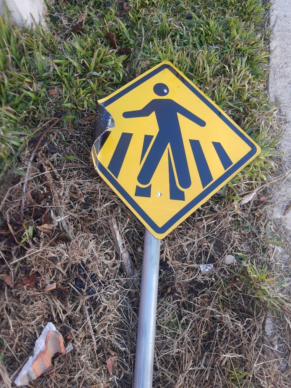 Detransede denuncia depredação de placas de sinalização em Carambeí