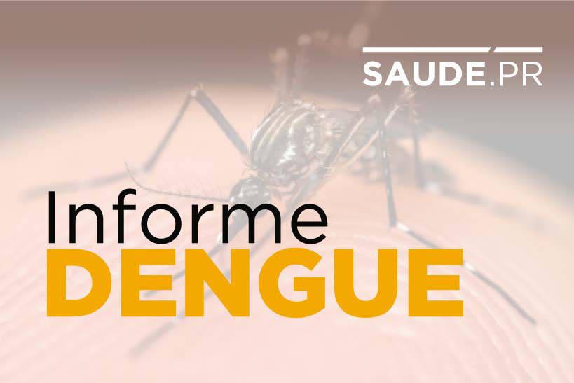Paraná registra três novos óbitos provocados pela dengue; total chega a 32