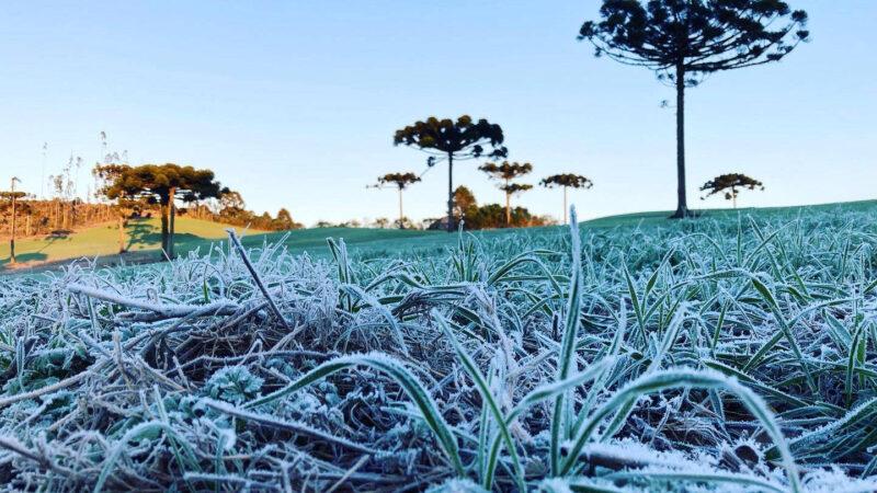 Paraná tem 16 cidades com temperaturas negativas; General Carneiro registrou -7,8ºC