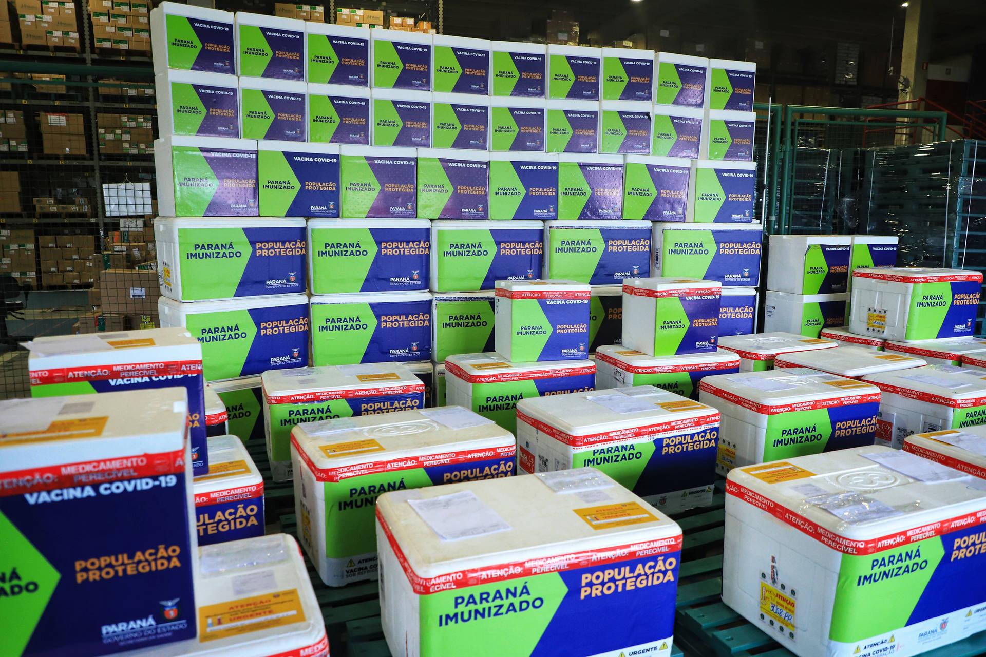 312,7 mil vacinas contra Covid-19 chegam ao Paraná entre hoje e amanhã