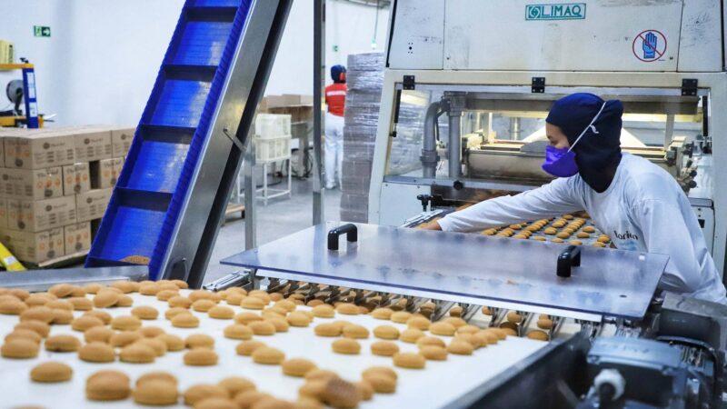 Indústria paranaense cresce 17,9% no primeiro semestre, segundo IBGE