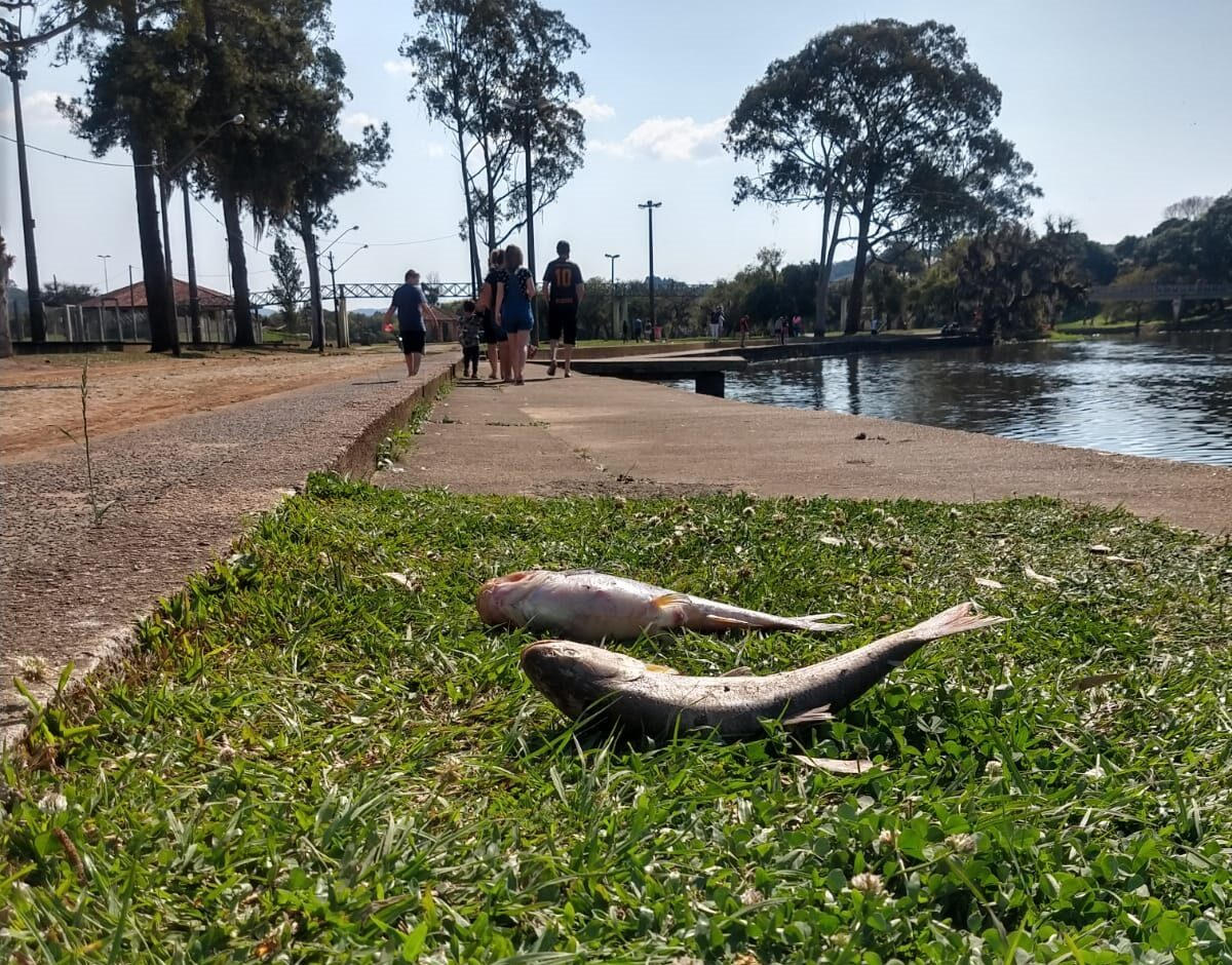 Represa da Prainha será aberta para melhorar vazão