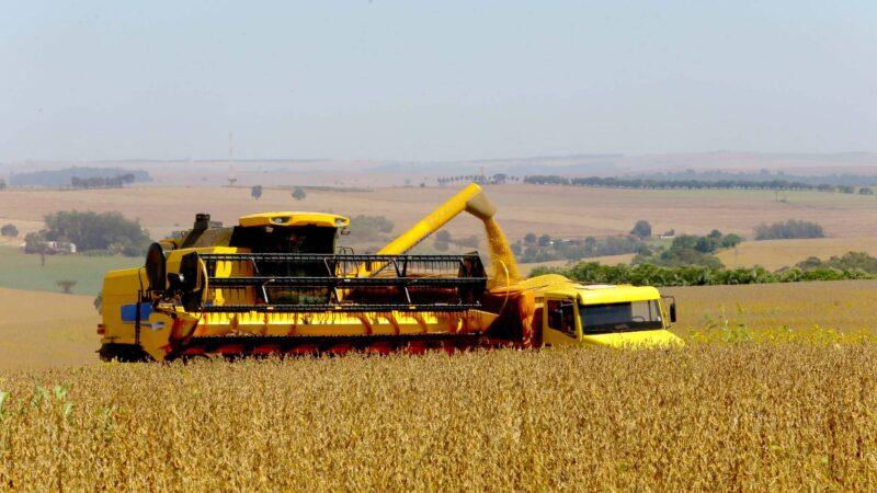 Paraná deve produzir 25,5 milhões de toneladas de grãos na safra de verão