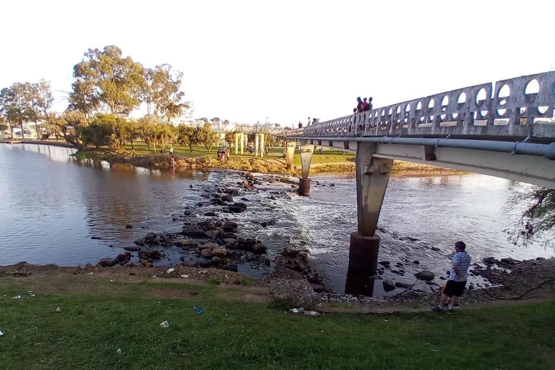 IAT fiscaliza mortandade de peixes no Rio Iapó, mas causa é incerta