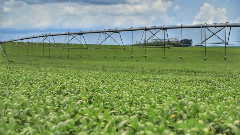 Ministério atende reivindicação do Paraná e altera calendário de plantio de soja na safra 2021/22
