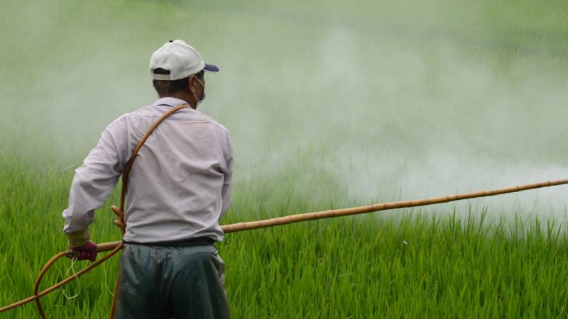 Novo decreto do governo federal sobre agrotóxicos exige capacitação para os aplicadores