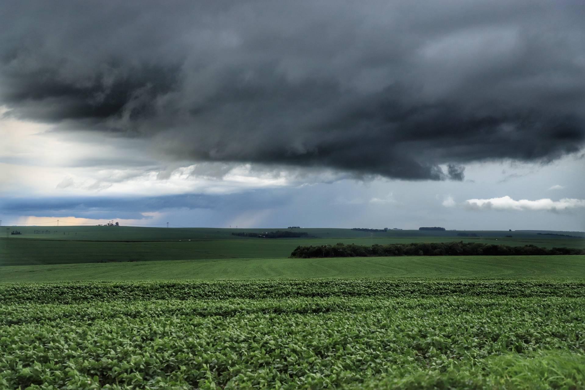 Chuvas retornam ao Paraná e oferecem melhores condições de plantio, segundo boletim