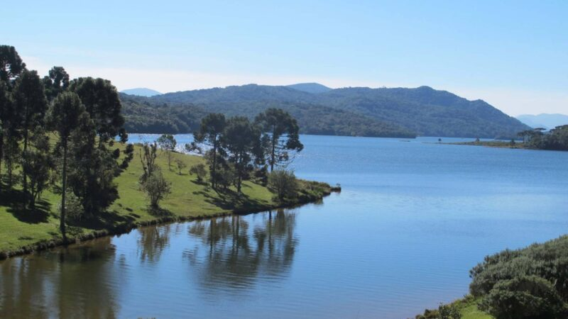 Após acordo judicial, Paraná receberá R$ 930 milhões para investir em projetos ambientais
